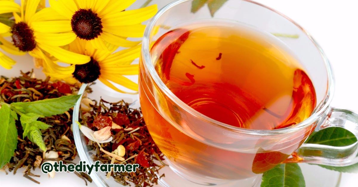 Herbal Tea Benefits The Body In So Many Ways
