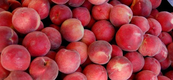 What Does the Nashville Farmers Market Have To Offer?