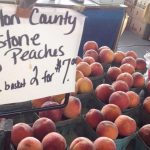 Learn About The Raleigh Farmers Market