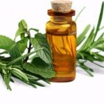 How to Make Peppermint Oil the Easy Way