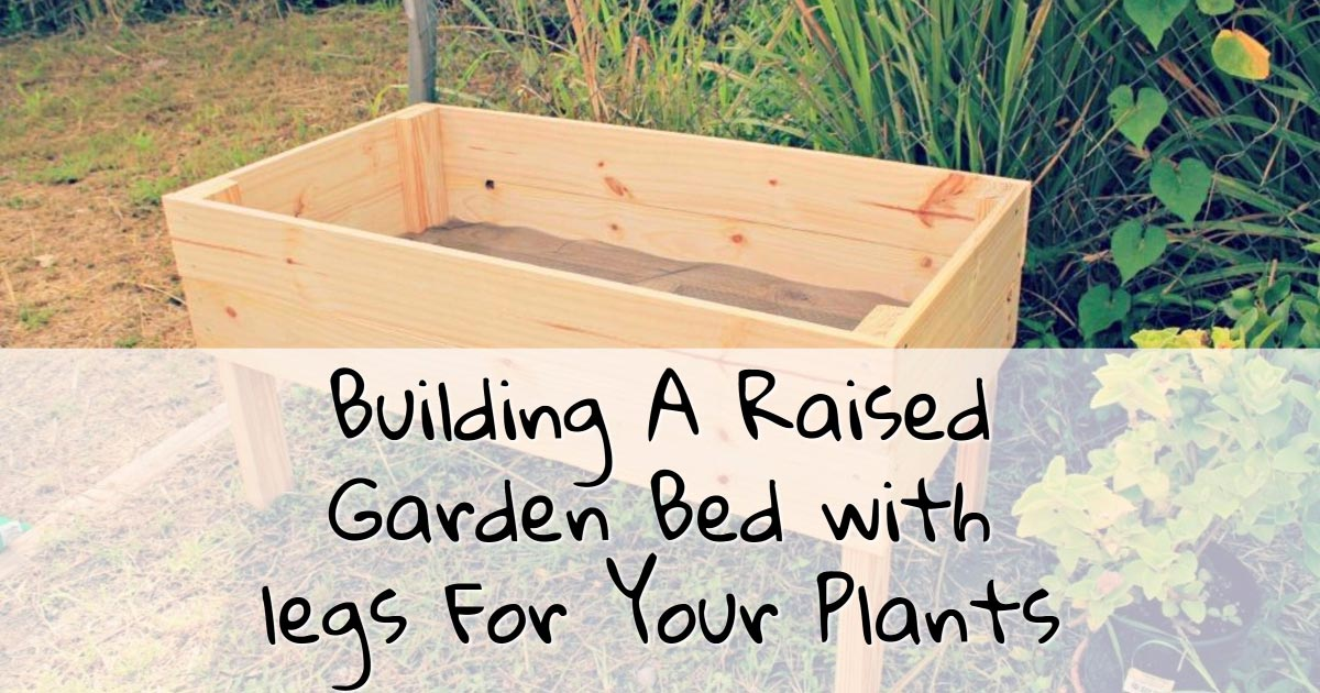 Building A Raised Garden Bed with legs For Your Plants The DIY