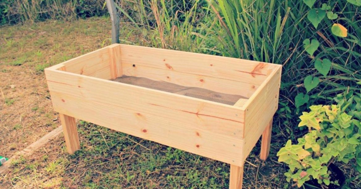 Building A Raised Garden Bed with legs For Your Plants