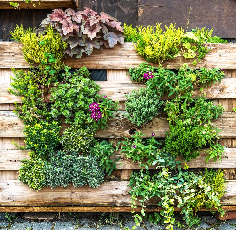 Garden House Beautiful Magazine Inspires Garden Lovers: 15 Beautiful Do-It-Yourself Pallet Gardens That You're
