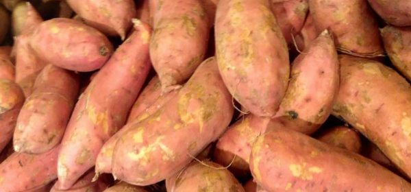 Why Are Sweet Potatoes Good For You?
