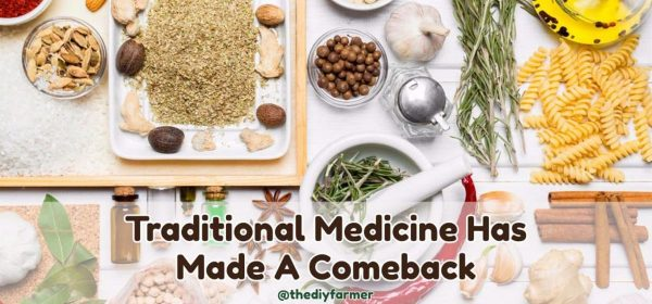 Traditional Medicine Has Made A Comeback