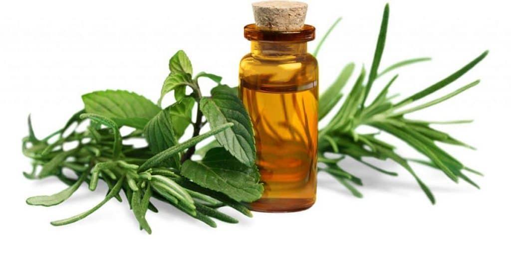 Using Peppermint Oil For Headaches The Diy Farmer